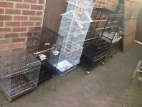 Bird Parrot cage for sale