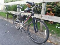 80cc petrol Saracen mountain bike, off road, like a mini moto but for adults