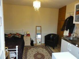 Studio Room/Flat for rent in Earley (near Reading University)