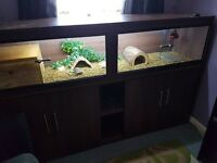 6ft Vivarium with cabnet