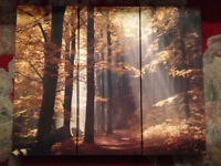 Enchanting morning woodland, wonderful looking 3 Piece wall picture