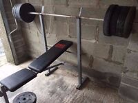 York Pro Power Weights Bench & Weights Included