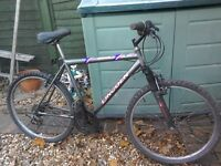 Gents 18 speed mountain bike LINCOLN. STORM