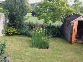 2 bed period cottage to rent, in rural village location with garden.