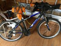 Ammaco MTX300 Jr. Mountain Bike - Good Condition