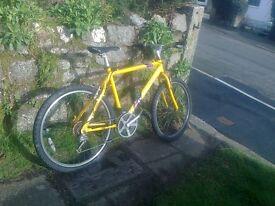 Dawes Shuniah mountain bike
