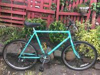 Vintage Raleigh lizard gents mountain bike 18 gears 20 inch frame 26 inch wheels