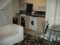 Nicely Split-level One double-bed Flat, Few Minutes Walk From The Oracle, Reading