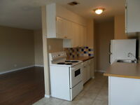 Upgraded 2Bdrm Unfurnished Suites with 1/2 Security Deposit