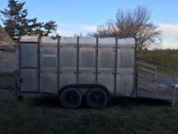 Ifor Williams 12ft livestock box