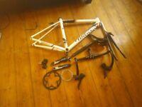 Wilier Road Racer Bike