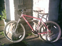 Felt Nine 29er Mountain Bike - 29 inch wheels - excellent condition + new spare tyre
