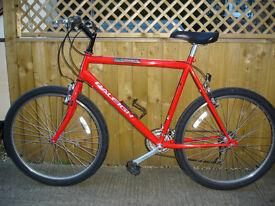 raleigh firefly sports bike big frame