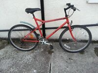 DAEWOO Men bike with 26 wheel size