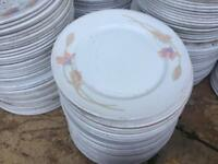 Plates for the Resturant and catering x 150