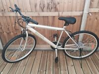 Brand new mountain bike mens