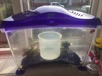 Great starter fish tank