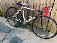 Vintage Rayleigh Equipe bike