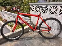 Raleigh Mountain bike 19 inch frame