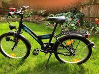Children's bicycle Pegasus (German top end range)