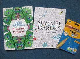 Brand new colouring books + 18 colouring pencils