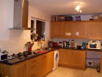 Furnished Double room in clean, modern, shared house with 2 cats
