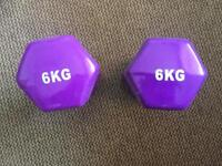 6kg dumbbell weights