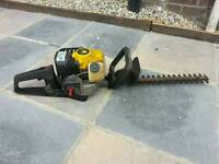 Petrol edge trimmers