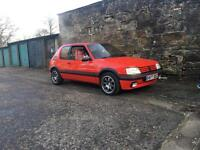GREAT EXAMPLE GLEAMING 205gti 2l turbo