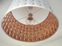Retro style shade and bulb
