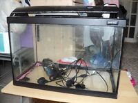 large fish tank with hood, pump and heater