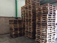 Standard wooden pallets for shed base, decking, furniture etc