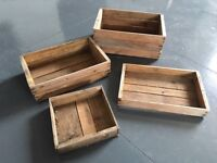 Vintage Seed Trays / Potting Trays