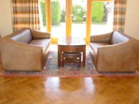 TWO Stunning Vintage de Sede DS-47 Bull Neck Leather Sofas - 3-Seater & 2-Seater - Both Extendable!
