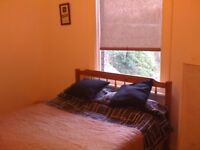 Double Room in Nether Edge