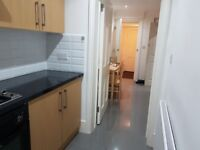 Lovely 2/3 bedroom flat with garden and contract between CLAPTON and LEA BRIDGE Station.no DSS!