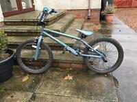 BMX dirty ripper
