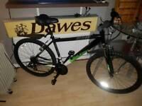 Raleigh Ventube bike