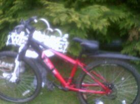 boys teenagers bike apollo phaze 21 speed