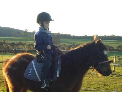 Junior riding lessons Morwell Latrobe Valley Preview
