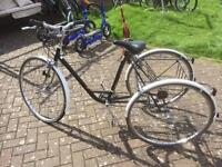 vintage Pashley tricycle trike, rare, adult size