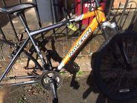 Mens bike frame - Raleigh Chinook