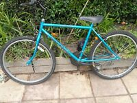 10 speed Raleigh bike very good condition age 12+