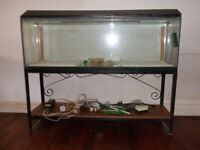 48 inch Aquarium with stand and accessories
