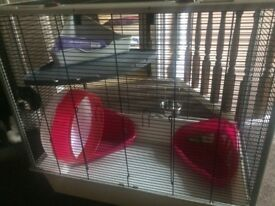 Large Rat Cage and Lots of Accessories! (Pick up only)