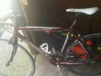 Saracen racing bike