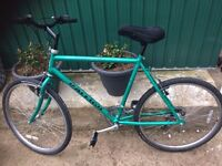 """MENS GENTS ADULTS RALEIGH AVALANCHE 26"""" WHEEL 22"""" FRAME 12 SPEED ROAD TYRE BIKE BICYCLE"""