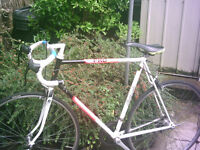 """Raleigh Pro Race Road Racing Bike Bicycle - Suitable someone 5ft 8"""" - 6ft 4"""""""