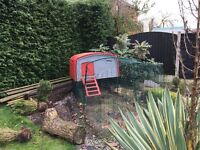 Eglu Chicken Coop with additional 1m run Red/Grey plus accessories