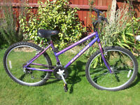 RALEIGH ZING MTB ONE OF MANY QUALITY BICYCLES FOR SALE